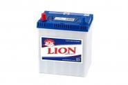 Lion-228