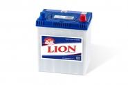 Lion-229