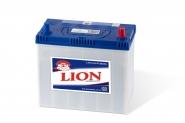 Lion-231