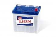 Lion-259