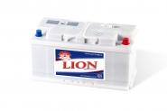 Lion-283