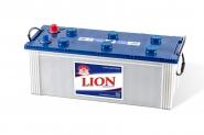 Lion-294