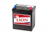 Lion-427
