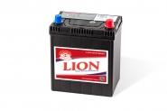 Lion-429