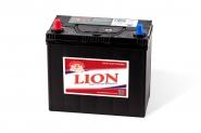 Lion-432