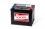 Lion-453