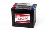 Lion-458