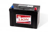 Lion-481