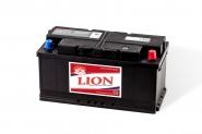 Lion-483