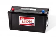 Lion-490