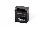 Lion-YTX9-BS