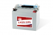 Lion-HZY-EV12-44