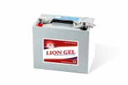 Lion-HZY-EV12-80