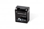 Lion-YTX14-BS
